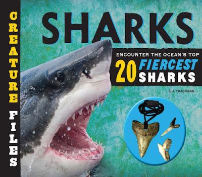 Creature Files : Sharks - a bookwrap