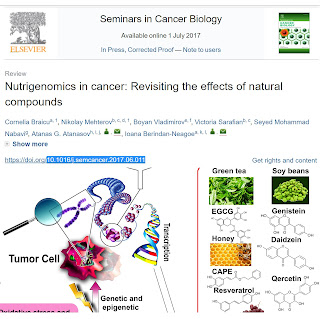Nutrigenomics in cancer: revisiting the effects of natural compounds image 1
