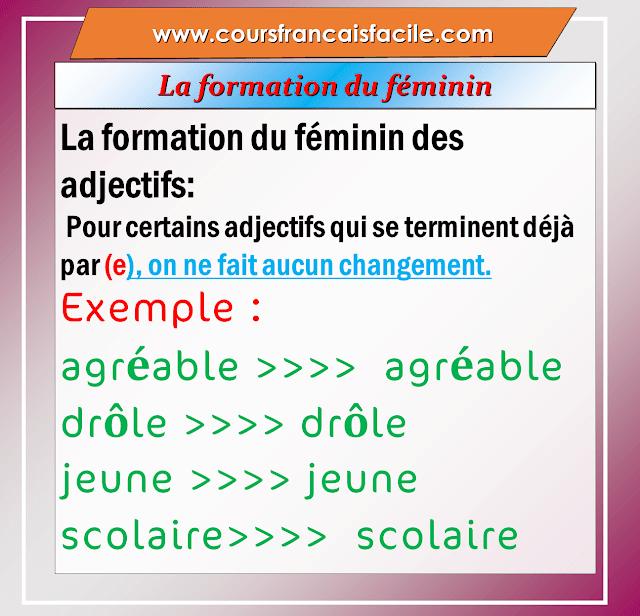 Leçon complète   La formation du féminin des adjectifs