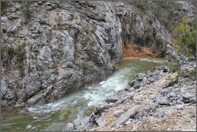 El río Tajo a la altura de Valdeminguete