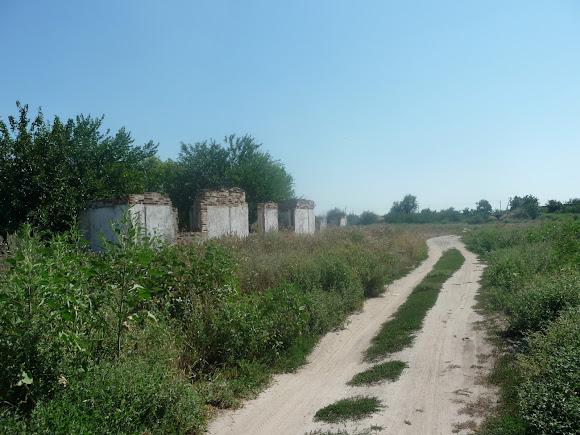 Васильковка. Руины зданий сельскохозяйственного предназначения