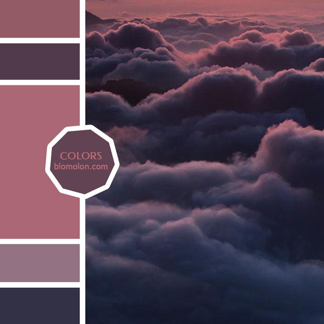 variedad_en_color_moodboard_80