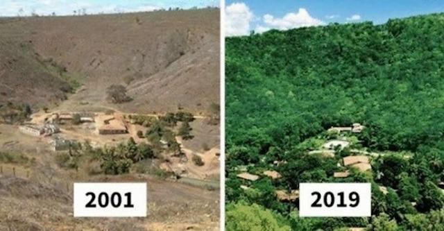 Семейная пара высадила за 20 лет 2 миллиона деревьев!!!