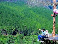Pengalaman Berkunjung dan Sekaligus Rekomendasi 12 Tempat Wisata Alam di Bandung yang Sayang dilewatkan
