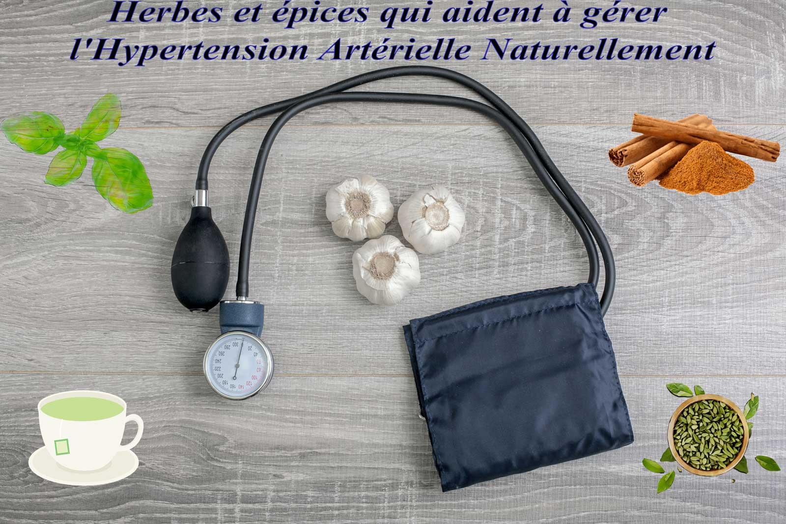 Herbes et épices qui aident à gérer l'hypertension artérielle naturellement