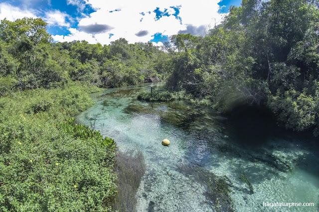 Nascente do Rio Sucuri, Bonito