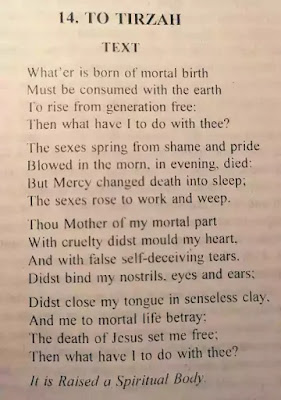 Thus in this poem To Tirzah, in the person of a human mother, represents the physical universe of Nature, mother of all, and thus the source of the physical body of man in contrast to his 'true self' or spiritual body.