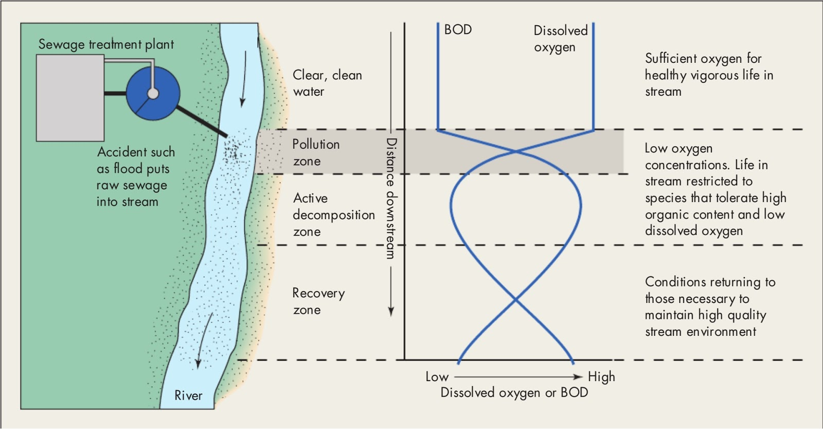 relationship between temerature and dissolved oxygen levels