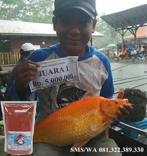 Umpan Serbuk Ikan Mas Galatama