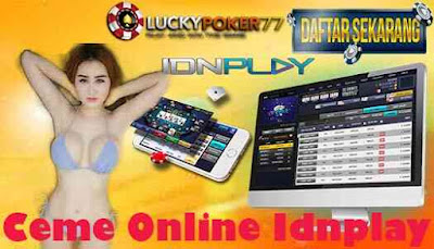 Ceme Online Idnplay