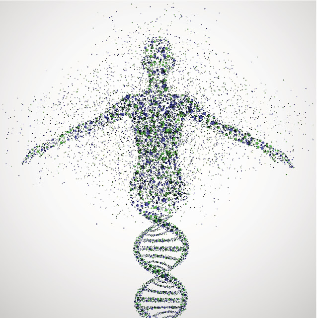New research suggests human genome could contain up to 20 percent fewer genes