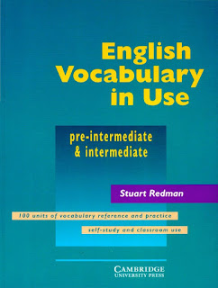 English Vocabulary in Use Intermediate