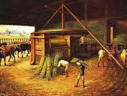 Economia Colonial no Brasil