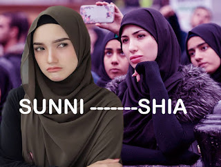 Differences between Sunni and Shia Muslims,Sunni and Shia Muslims