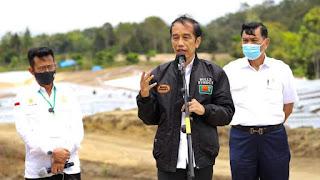 Presiden: Lumbung Pangan Sumut jadi Contoh Provinsi Lain, Food estate di Humbahas Hasilkan Kentang, Bawang Merah, Putih