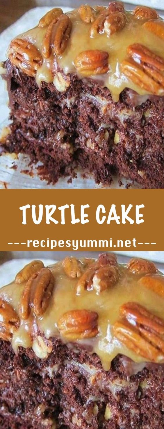 Chocolate Turtle Cake Recipe