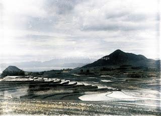 sawah gunung dan danau toba di tangga batu kabupaten toba samosir