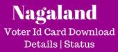 nagaland-voter-id-card-download-details-status