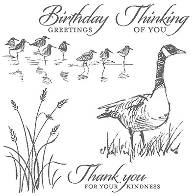 Wetlands Stamp Set, Stampin' Up!