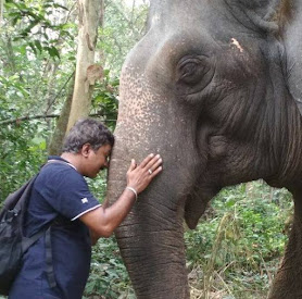 Elephant Whisperer, Anand Shinde