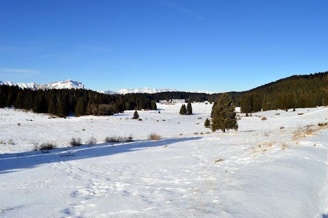 itinerari ciaspole camminate invernali folgaria luserna lavarone