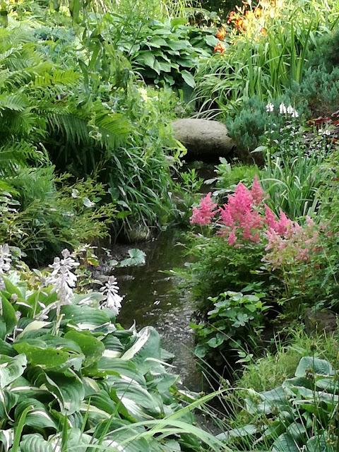 strumyk w ogrodzie, byliny nad strumieniem