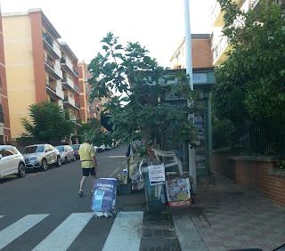 Cagliari in Verde: Un altro Fico ficchetto