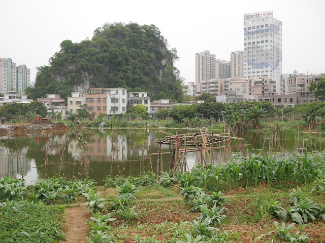 View from Panlong Lake Scenic Area in Yunfu