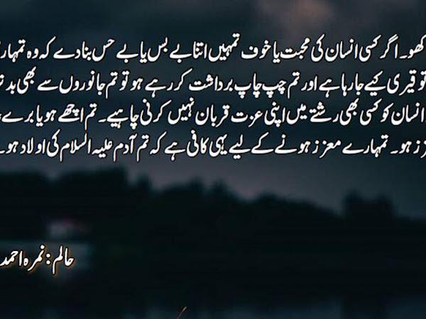 Haalim Novel K Quotes | Iqtibas | Lines
