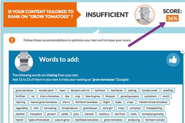 đánh giá độ trùng lặp của website