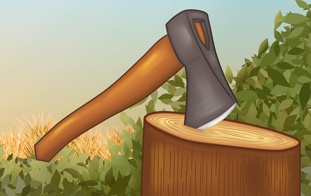 The Honest Woodcutter Short Story for KIDS within 150 Words
