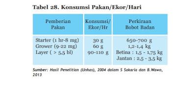 tabel konsumsu pakan per ekor perhari ayam kampung