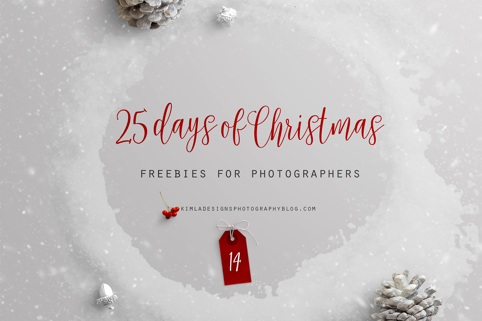 25 Days of Christmas Freebies for Photographers Day 14th