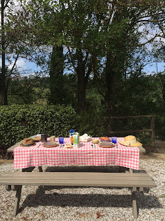 Picnic Bench in Tuscany with Breakfast Spread and Red Gingham Tablecloth
