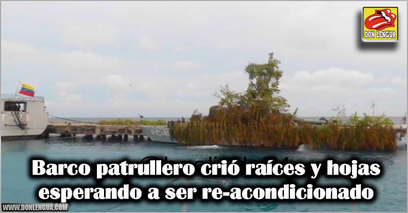 Barco patrullero crió raíces y hojas esperando a ser re-acondicionado