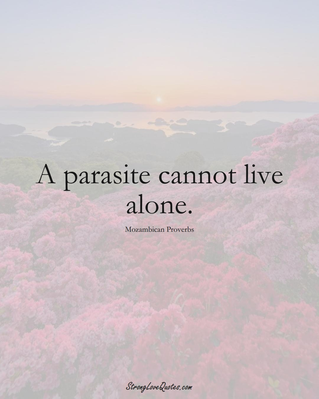A parasite cannot live alone. (Mozambican Sayings);  #AfricanSayings