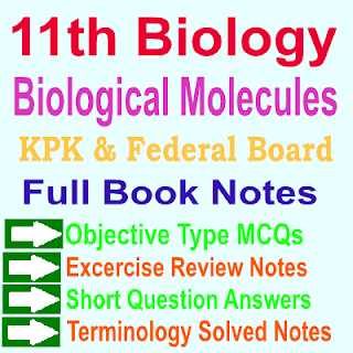 Solved Notes Biology Chapter Two Biological Molecules PDF Download