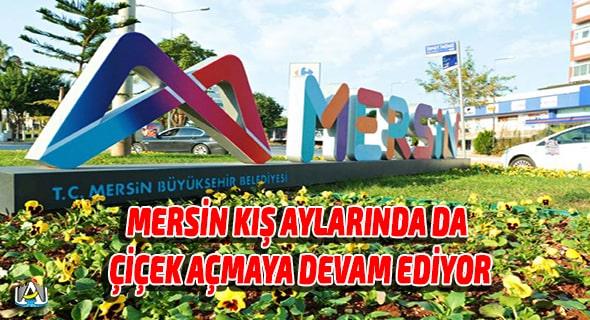 Mersin Büyük Şehir Belediyesi,Mersin Haber,Vahap Seçer,