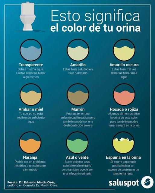 El significado del color de la orina