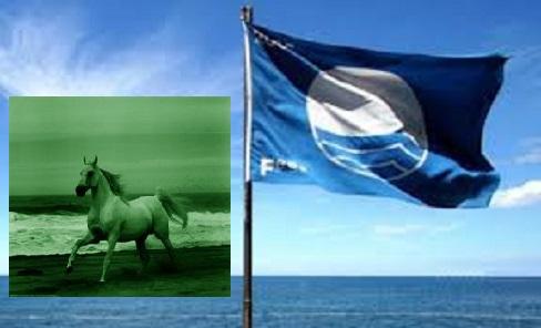 Πράσινα άλογα σε γαλάζιες παραλίες!!