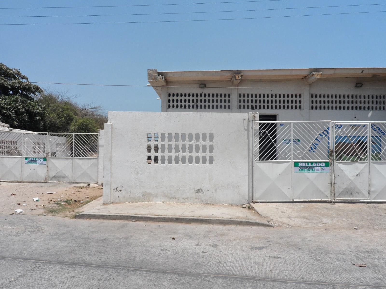 hoyennoticia.com, Riohacha más de tres años sin matadero público