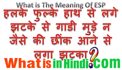 What is the meaning of ESP in Hindi