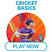 Amazon Cricket Basics Quiz - At which ground did India play Australia in a Women's T20 World Cup final for the first time?