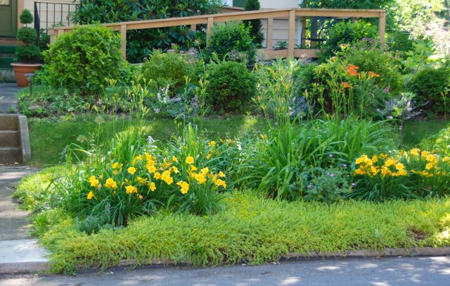 Wife Mother Gardener Gardening In Pennsylvania June