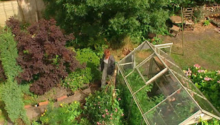 Overview of Adam's greenhouse
