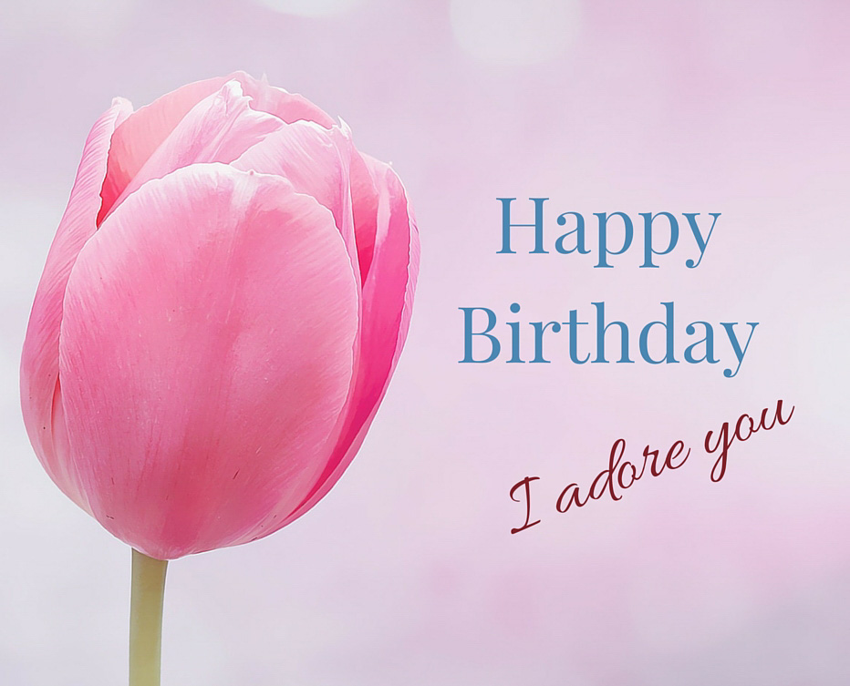 I Wish You All The World Happiness May Enjoy This Amazing Day As Much Can A Very Happy Birthday To My Best Friend Have Fabulous One