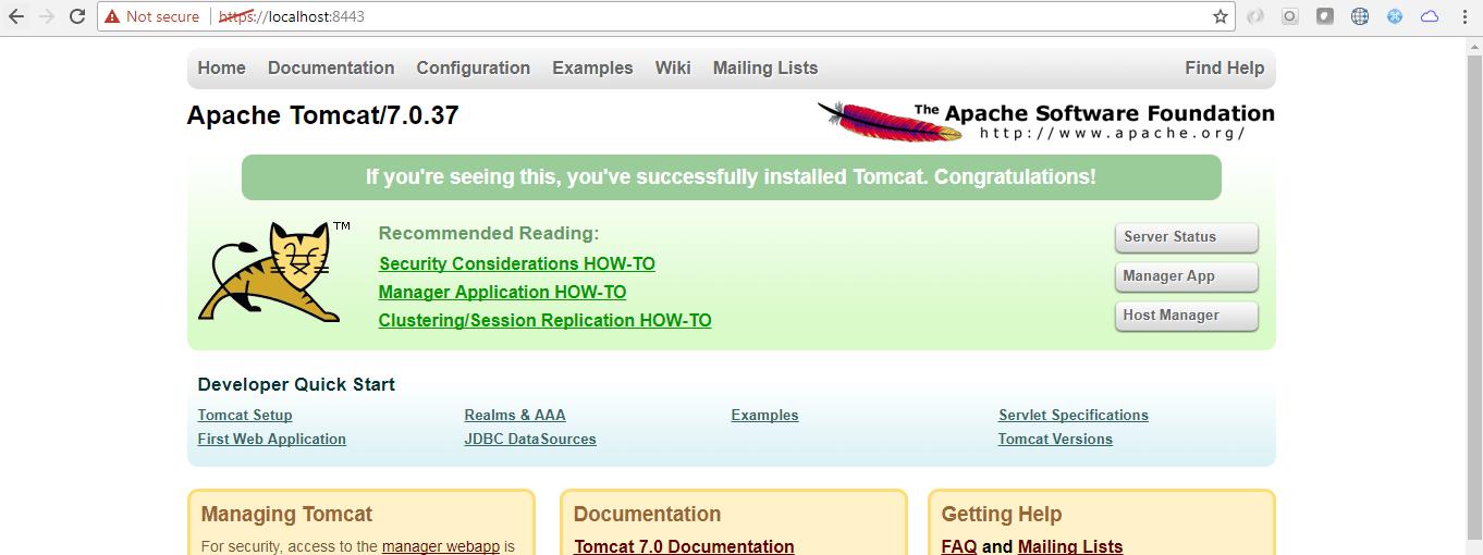 Setting Up HTTPS(SSL) on Apache Tomcat 7 - I AM BALA