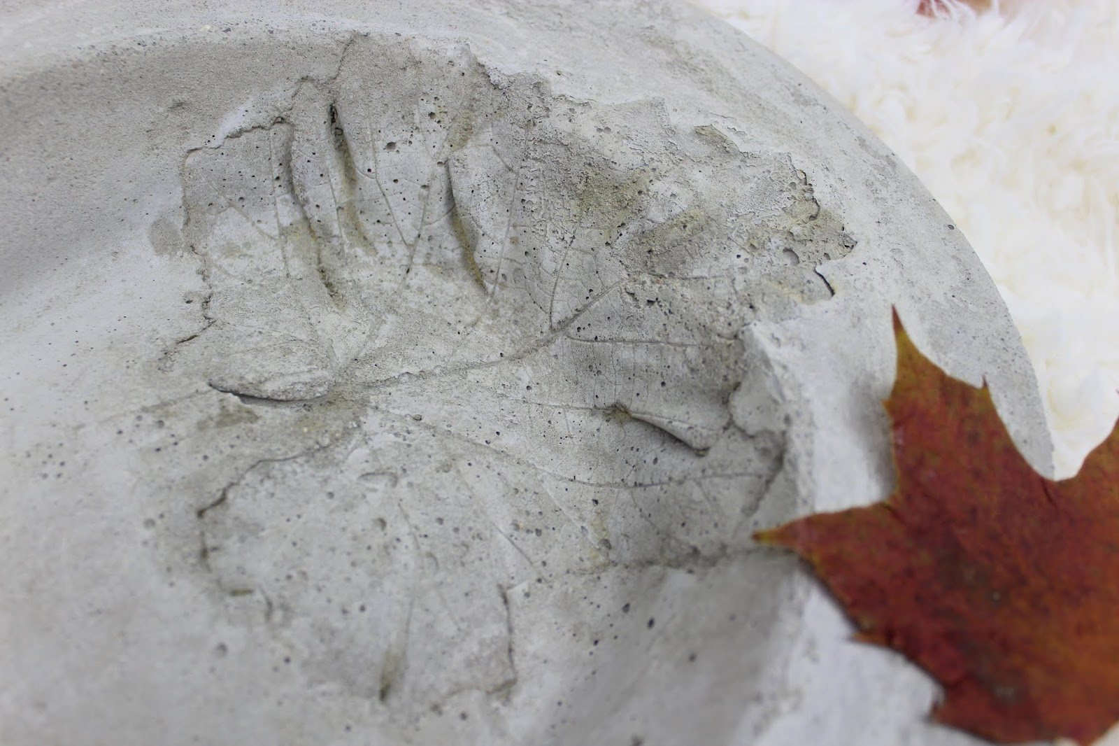 DIY: Herbstschale aus Beton mit Blattdruck ganz einfach selber machen - eine wunderschöne Deko zum Herbst