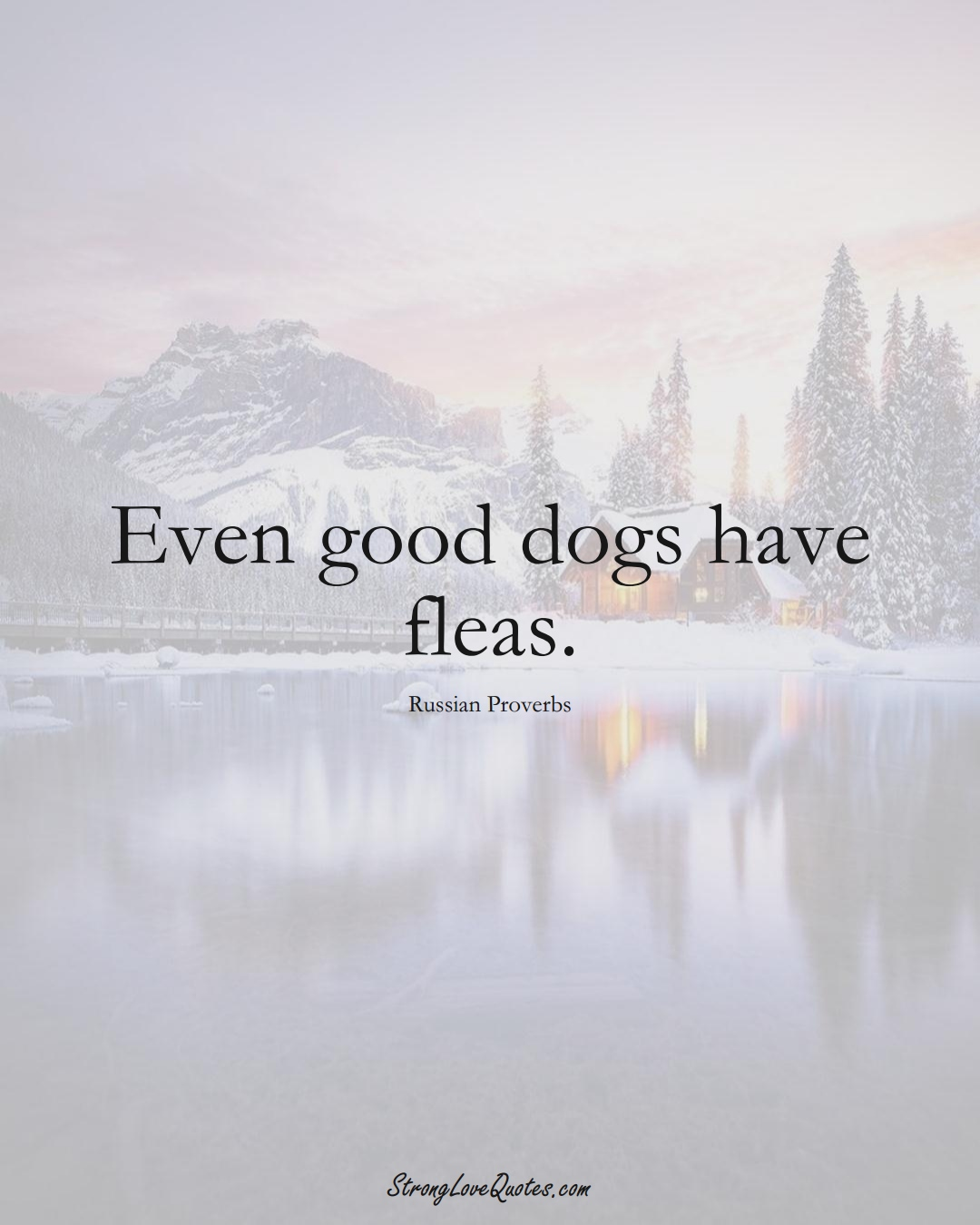Even good dogs have fleas. (Russian Sayings);  #AsianSayings