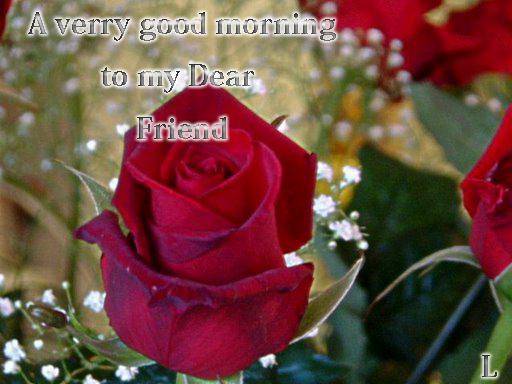 Good Morning Flowers  GreetingsGoodmorning Image Flower